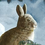 Winter Whispers 38514 414 Rabbit and Forest Multi Panel Wilmington Prints