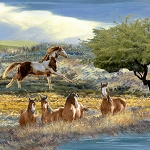 Mustang Meadow 51753 412S Horses Scenic Multi, South Sea Imports