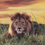 Big Cats 73225-254 Africa Repeating Stripe South Sea Imports