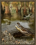 Realtree Alligators 9956 Panel, Print Concepts