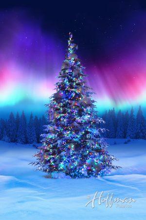 Northern Lights Christmas Tree P4366 643 Borealis Hoffman