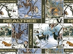 Realtree 10080 Winter Blocks, Print Concepts