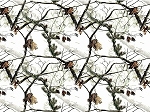 Realtree 10086 Branches White, Print Concepts