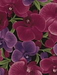 Wild Orchid C3205 Magenta Large Orchids, Timeless Treasures