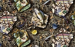 Realtree 10010 Fish Patches, Print Concepts