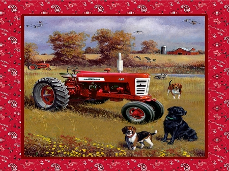 Farmall Tractor Field Dog Panel 10116 Print Concepts