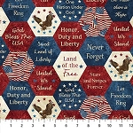 Stonehenge Stars and Stripes VII 22780 49 Patriotic Hexis, Northcott