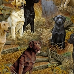Loyal Labs 27286 X Labrador Scenic, Quilting Treasures