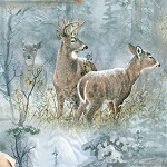 Whispering Winter 38527 472W Multi Scenic, Wilmington Prints