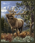 Windham Fabrics 50902 X Mountain Elk