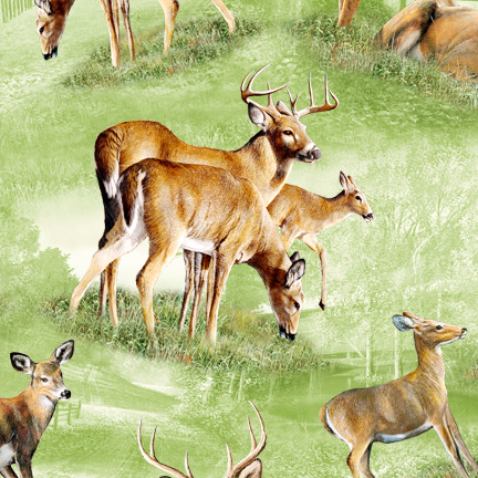 South Sea Friendly Visitors 90206 727 Deer Allover Green