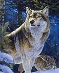 Sentinal Wolf ML30638C1 Digital Panel, David Textiles