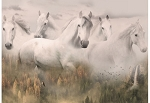 Call of the Wild R4592 112 Spirit Horses Digital Panel, Hoffman