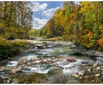 Call of the Wild R4612 700 River Forest Digital Panel, Hoffman