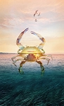 Call of the Wild R4619 484 Crab Digital Panel, Hoffman