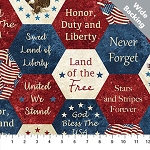 Stonehenge Stars and Stripes VII B22780 49 Wide Backing, Northcott