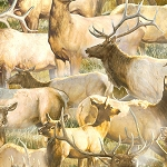 Breaking Light 51761 752 Packed Elk Tan, Wilmington Prints