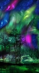 Northern Lights Panel, Timeless Treasures