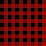 Gone Camping C8465 Red Buffalo Plaid, Riley Blake