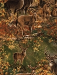 Deer in Woods CF3557 Deer Flannel, Timeless Treasures