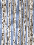 Birch Trees CF3598 Birch Flannel, Timeless Treasures