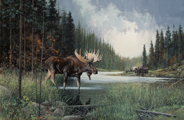 Naturescapes Moose Lake DP22943 34 Digital Panel, Northcott