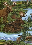Timeless Treasures Moose C7252 Natural