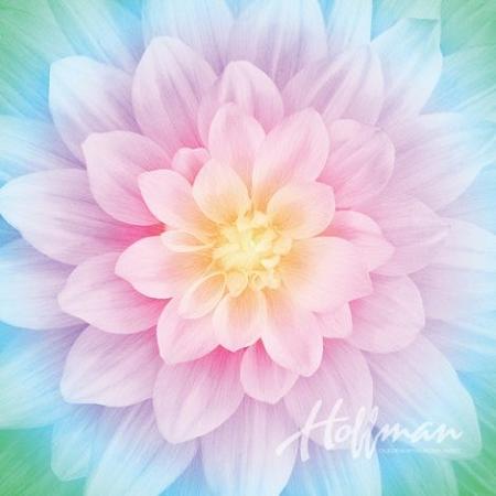 Dream Big Floral Digital Panel P4389 132 Opal Hoffman