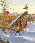 Fish and Fowl 8727 Pheasants Digital Panel, Riley Blake