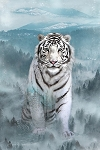 Call of the Wild Digital Panel R4564 190 Ice Tiger, Hoffman