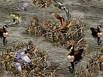 Realtree Flannel 10022 Ducks and Fish, Print Concepts