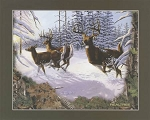 Realtree 10079 Running Deer Panel, Print Concepts