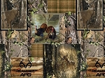 Realtree 10153 Wildlife Boxes, Print Concepts
