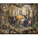 Realtree Edge Daybreak Panel 1167 X
