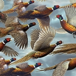 Wild Pheasants 24533 B Blue Pheasants, Quilting Treasures