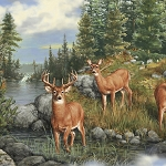 Deer Mountain 24791 G Deer Scenic Green, Quilting Treasures