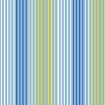 Delancy 27363 B Blue Stripe Quilting Treasures