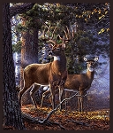 White Tail Deer Digital Panel 50061DP X, Windham