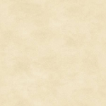 Maywood Studio Woven Shadowplay 513 E4 Cream Tonal