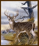 Old Homestead Digital Panel 52095DP X Deer, Windham