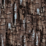 Into the Woods Flannel 8488F 77 Bark Texture Brown, Kanvas by Benartex