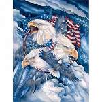 Eagle Digital Panel 8703X, Sykel