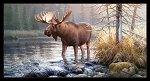 Moose Stream 9205 Black Panel Elizabeths Studio
