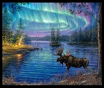 Black Northern Lights Digital Panel 9600E Black, Elizabeths Studio