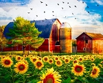 Sunflowers and Barn Digital Panel AL38900C1, David Textiles