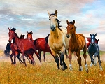 Wild Nature Horses AL44550C1 Digital Panel David Textiles