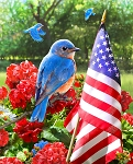 Patriotic Bluebird American Flag GG00530C1 Digital Panel David Textiles