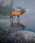 Natures Finest P9950 Elk Digital Panel, Riley Blake