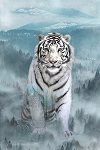 Call of the Wild White Tiger R4564 190 Digital Panel, Hoffman
