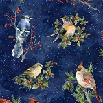 Winter Wonder S4707 128 Midnight Songbirds, Hoffman